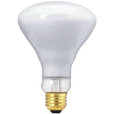 Flood & Spotlight Bulbs
