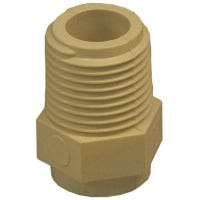 CPVC Male Pipe Thread Adapter, 0.5-In.