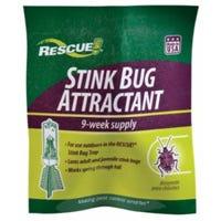 Stink Bug Trap Attractant
