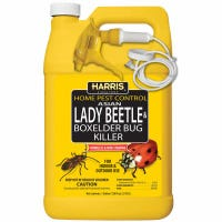 Asian Lady Beetle & Box Elder Bug Killer, 1-Gal.