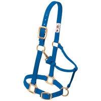 Snap Halter For Weanling/Pony, Blue Nylon, 3/4-In.