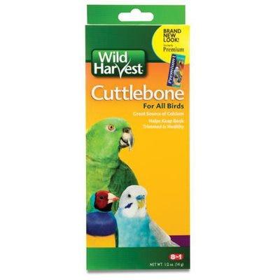 Pet Bird Cuttlebone