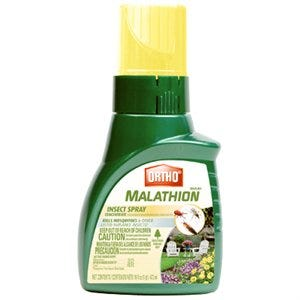 Malathion Insect Control, 16-oz. Concentrate