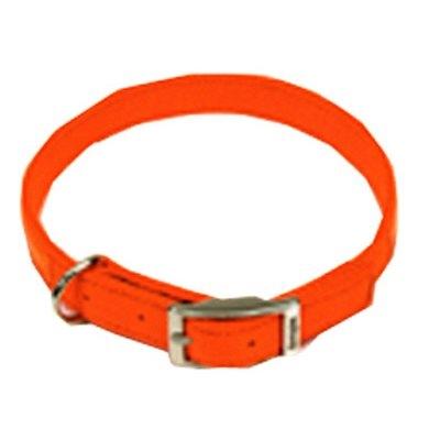 Image of Dog Collar, Safety Orange, 1 x 22-In.