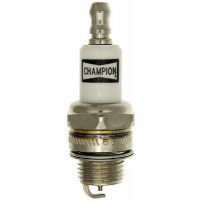 Small Engine Spark Plug, RDZ19H