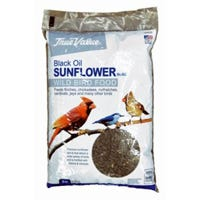 Black Oil Sunflower Bird Seed, 5-Lbs.