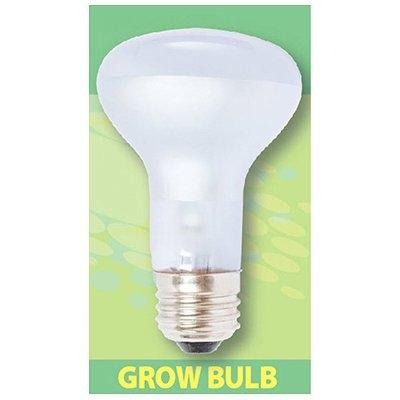Image of Dayspot Grow Light Bulb, 60-Watt