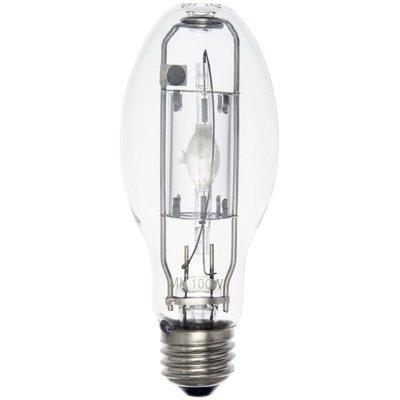 Image of Sunburst Replacement Bulb, 100-Watt