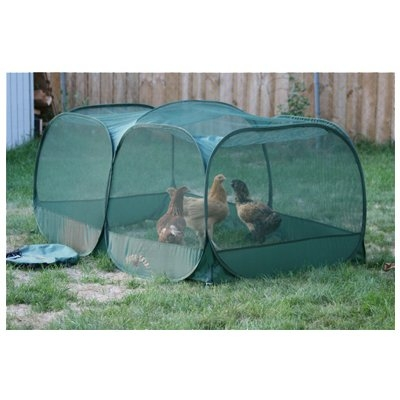 Image of Portable Chicken Enclosure