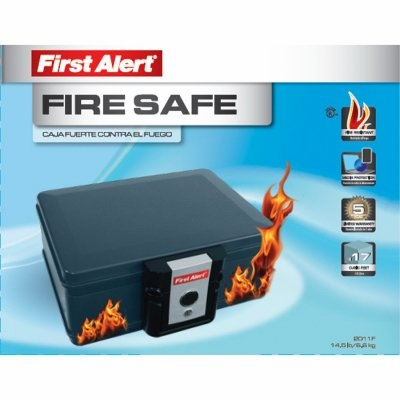 Image of Fire Protector Chest, 0.17-Cu. Ft.