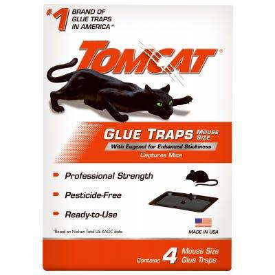 Mouse Glue Trap, Professional Strength, 4-Pk.