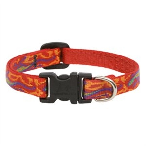 Image of Dog Collar, Adjustable, Go Go Gecko, 1/2 x 10 to 16-In.