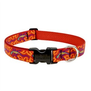 Image of Dog Collar, Adjustable, Go Go Gecko, 1 x 12 to 20-In.