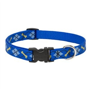 Image of Dog Collar, Adjustable, Dapper Dog, 3/4 x 13 to 22-In.