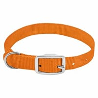 Dog Collar, Adjustable, Orange Nylon, Quadlock Buckle, 1 x 19 to 22-In.