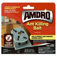 Indoor Ant Control Bait Station, 4-Pk.
