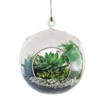 Floating Orb Do It Yourself Garden Kit