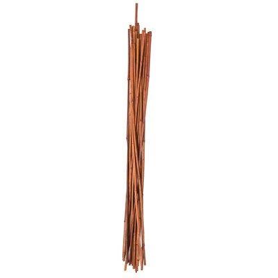 Bamboo Plant Stake, 4-Ft., 12-Pk.