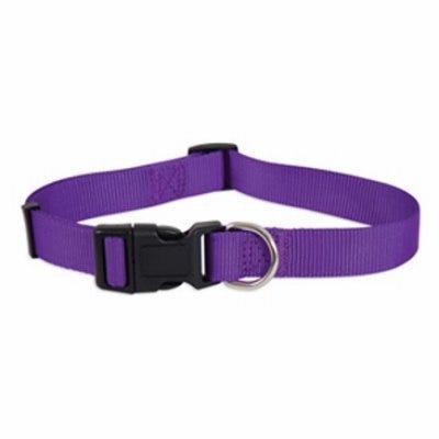 Dog Collar, Purple Nylon, 1 x 16-26-In.