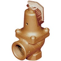 ASME Water-Pressure Relief Valve, 30-Lb., 0.75-In.