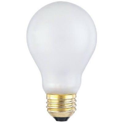 Shatterproof Light Bulb, 100-Watts