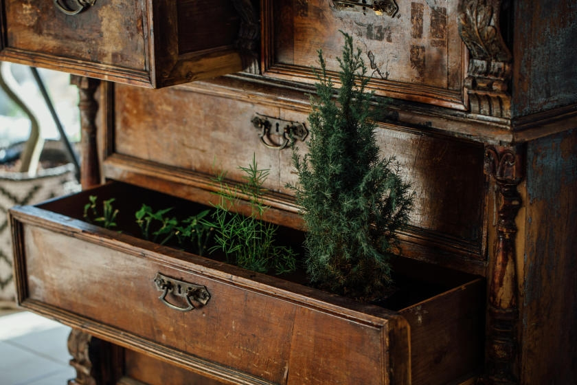 Ferns decorating vintage cabinet