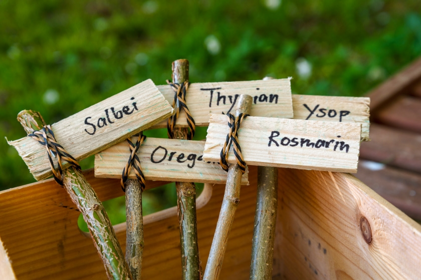 Hand-made plant signs for vegetable garden