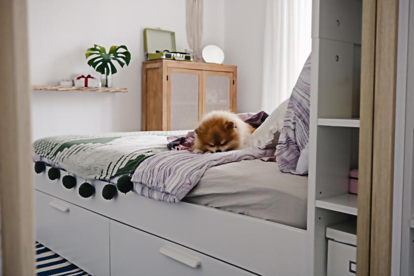 Bed with buit-in storage