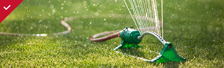 Watering your Lawn and Garden